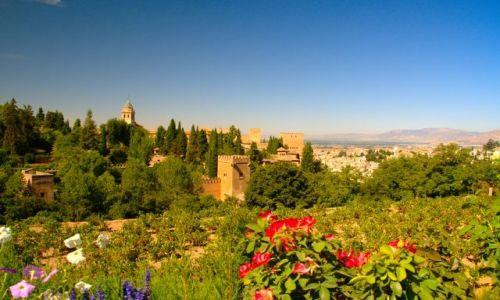 Zdjęcie HISZPANIA / Andaluzja / Granada / ogrody Alhambry