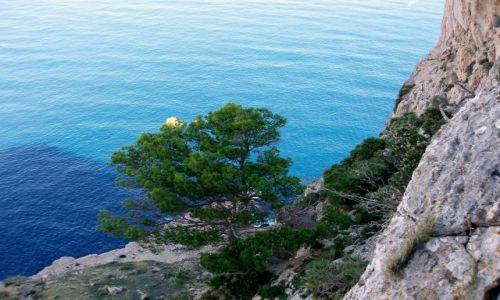 HISZPANIA / Polnocny- wschod Majorki / Droga na Formentor / Majorka - Formentor