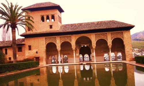 Zdjecie HISZPANIA / Walencja / Granada / W ogrodach Alhambry