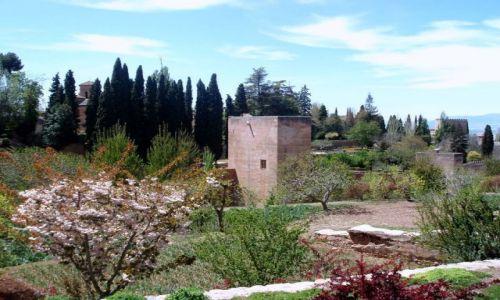 HISZPANIA / Poludnie Hiszpanii / Palac Alhambra w Granadzie / Andaluzja -Granada-Alhambra