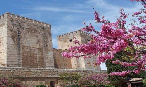 Zdjęcie HISZPANIA / Poludnie Hiszpanii / Granada-Alhambra / Andaluzja-Granada-Alhambra