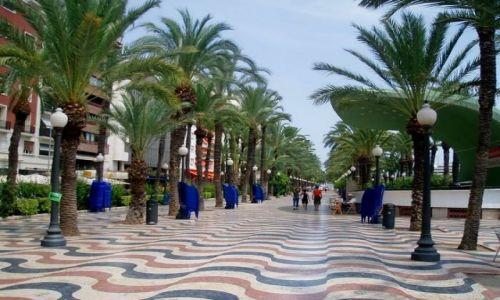 Zdjecie HISZPANIA / Srodkowa Hiszpania (Walencja) / miasto Alicante / Alicante-Hiszpania