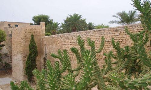 Zdjecie HISZPANIA / Srodkowo-Wschodnia Hiszpania / Zamek sw  Barbary / Alicante