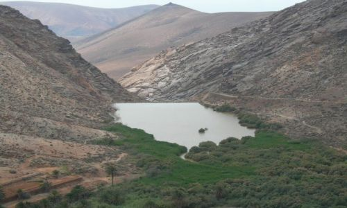 Zdjęcie HISZPANIA / Fuerteventura / Betancuria / Zaparcie