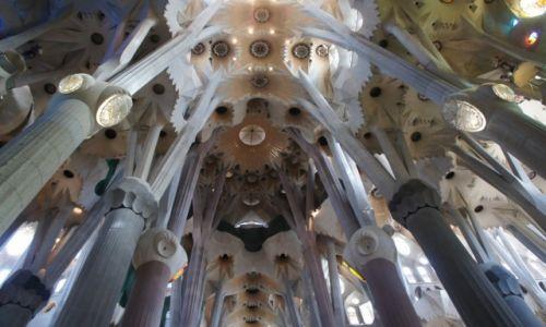 HISZPANIA / Katalonia / Barcelona, Sagrada Familia - / Las filarów nawy głównej