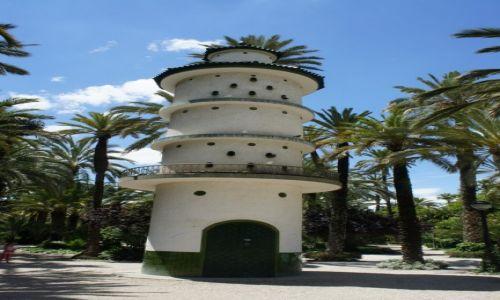 Zdjęcie HISZPANIA / Alicante / Elche / Gołębnik w parku