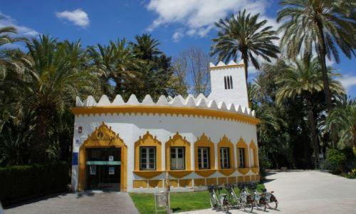 Zdjecie HISZPANIA / Alicante / Elche / Tourist Info