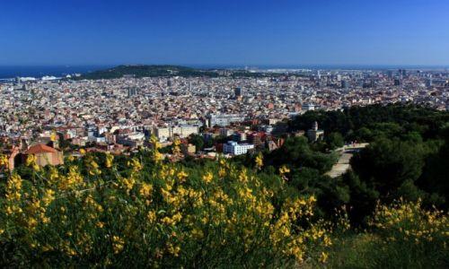Zdjecie HISZPANIA / Katalonia / Barcelona / Barcelona