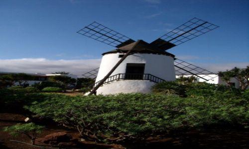Zdjęcie HISZPANIA / Wyspy Kanaryjskie / Molino de Antiqua / wiatrak