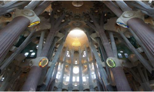 Zdjęcie HISZPANIA / Katalonia / Barcelona, Sagrada Familia / Baldachy sklepienia