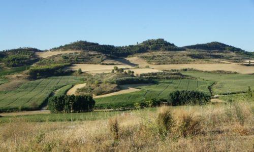Zdjęcie HISZPANIA / Navarra / Estella / Pola i poletka