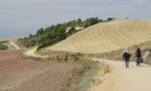 Zdjęcie HISZPANIA / La Rioja / Navarrete / Camino