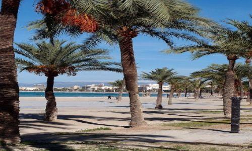 Zdjęcie HISZPANIA / Majorka / El Arenal / Plaża