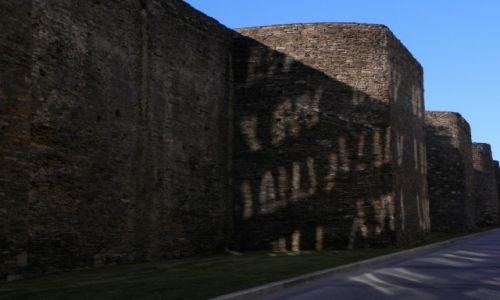 Zdjęcie HISZPANIA / Galicia / Lugo / zajączki