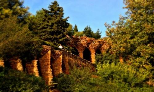 Zdjecie HISZPANIA / - / Barcelona / Przyroda i architektura w Parku Guell