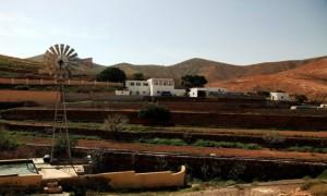 Zdjecie HISZPANIA / Fuerteventura/Wyspy Kanaryjskie / Dolina św. Ines / Farma