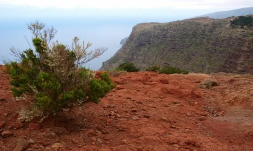 Zdjęcie HISZPANIA / Wyspy Kanaryjskie / La Gomera / widok na klify