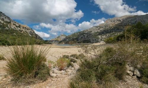 Zdjęcie HISZPANIA / Majorka / Majorka / Gorg Blau