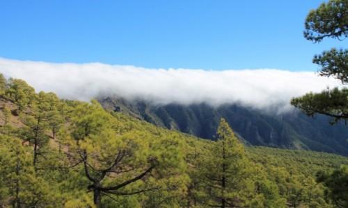 HISZPANIA / Wyspy Kan. / W drodze na Pico Bejenado / La Palma