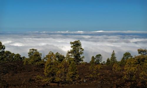 HISZPANIA / Teneryfa / Park Teide / Ponad chmurami