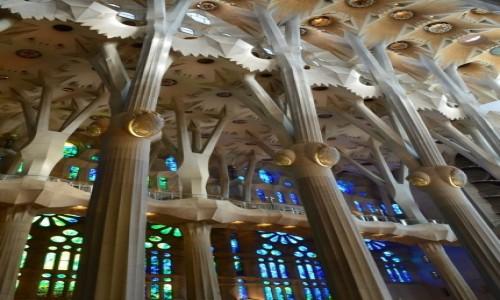 Zdjecie HISZPANIA / Katalonia / Barcelona / Szalony sen architekta