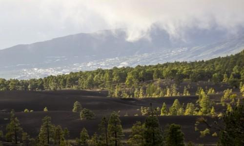 Zdjęcie HISZPANIA / Wyspy Kanaryjskie / La Palma / La Palma