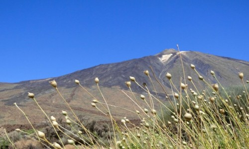 Zdjęcie HISZPANIA / Wyspy Kanaryjskie / Teneryfa / Pico del Teide.