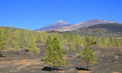HISZPANIA / Wyspy Kanaryjskie / Teneryfa / Park Narodowy del Teide (1)