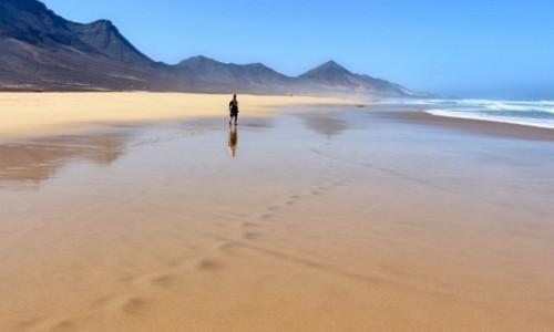 Zdjecie HISZPANIA / Wyspy Kanaryjskie / Fuerteventura / Dziewicza plaża Cofete