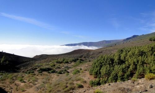 HISZPANIA / Wyspy Kanaryjskie, Teneryfa / Półwysep Anaga. / W górach Anaga