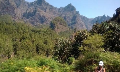 Zdjecie HISZPANIA / Wyspy Kanaryjskie / La Palma, Park Narodowy Caldera de Taburiente / Zona de Acampada