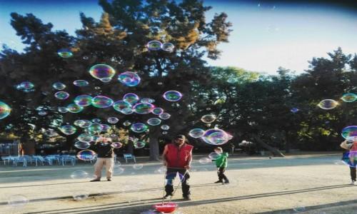 Zdjęcie HISZPANIA / - / Barcelona-Parc de la ciutadella / wspomnienie dzieciństwa:)