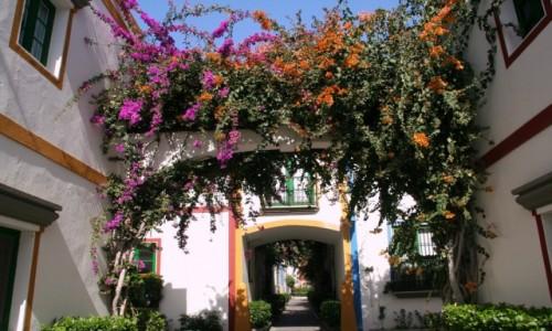 Zdjecie HISZPANIA / Gran Canaria / Puerto de Mogan / Kolorowo 2