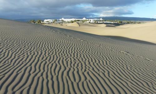 HISZPANIA / Gran Canaria / okolice Maspalomas / oaza2