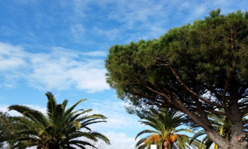 Zdjecie HISZPANIA / Katalonia / Tarragona / Blue sky