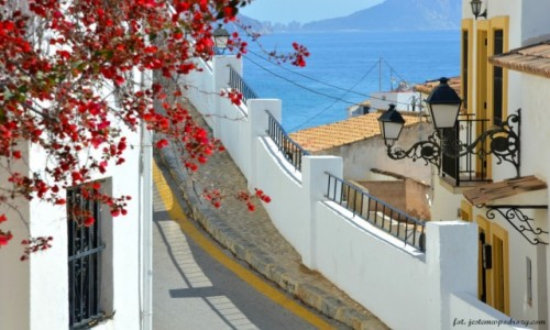 Zdjecie HISZPANIA / Costa Blanca / Altea / Wiosenny spacer