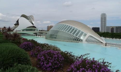 Zdjęcie HISZPANIA / Valencia / Valencia, Miasteczko Sztuki i Nauki / Santiago Calatrava