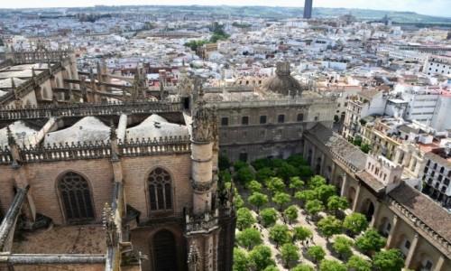 Zdjęcie HISZPANIA / Andaluzja / Sewilla / Widok z dzwonnicy katedry w Sewilli