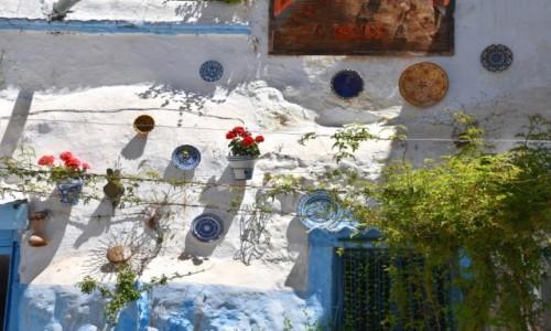 Zdjęcie HISZPANIA / Andaluzja / Grenada, Sacromonte / Fasada domu w grocie
