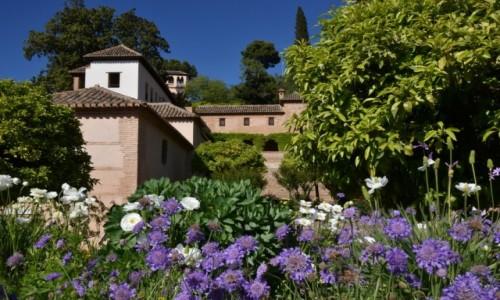 Zdjęcie HISZPANIA / Andaluzja / Grenada / Ogrody Alhambry