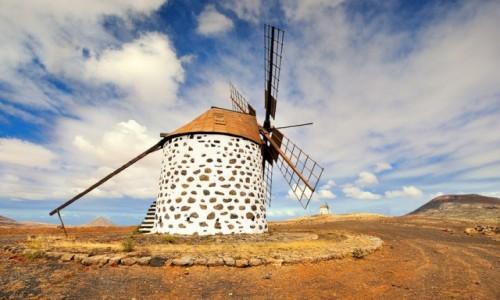 Zdjęcie HISZPANIA / Wyspy Kanaryjskie,  Fuertewentura / La Olivia / Wiatrak