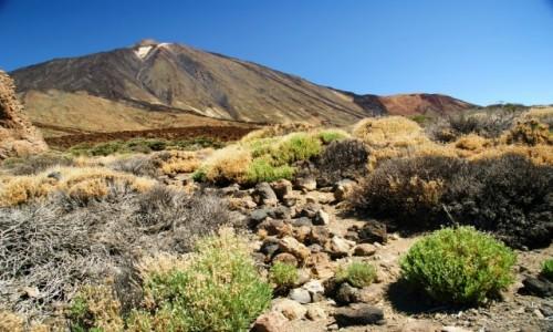 Zdjęcie HISZPANIA / Wyspy Kanaryjskie / Teneryfa / Teide
