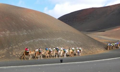 HISZPANIA / Wyspy Kanaryjskie / Lanzarote / Na wielbłądzim szlaku.
