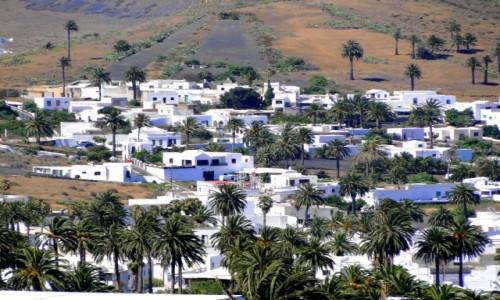 Zdjęcie HISZPANIA / Wyspy Kanaryjskie / Lanzarote / W Dolinie Tysiąca Palm.