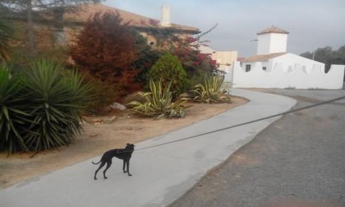 Zdjecie HISZPANIA / Galicja / Okolice OS Congos / hiszpański dom w małej wsi
