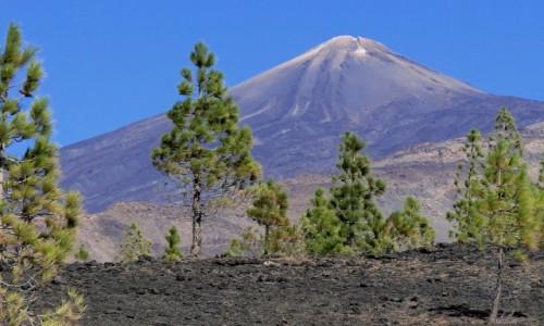 Zdjecie HISZPANIA / Wyspy Kanaryjskie / Teneryfa - Park Narodowy Teide / Kanaryjskie wspomnienie - Teneryfa (6)