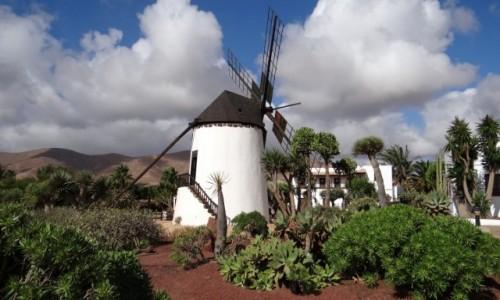 Zdjęcie HISZPANIA / Fuerteventura / Antigua / Wiej wietrzyku, wiej!