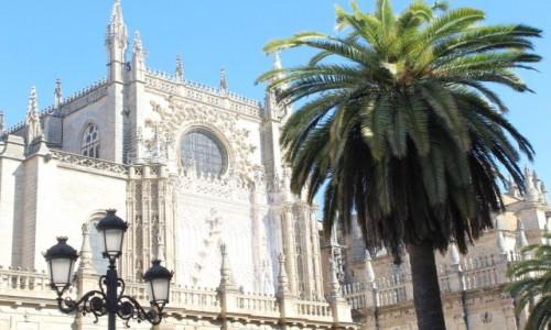 Zdjecie HISZPANIA / Andaluzja / Sewilla / Przepiękna katedra