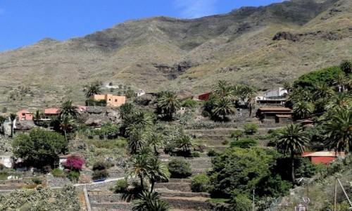 Zdjęcie HISZPANIA / Wyspy Kanaryjskie / Teneryfa / Kanaryjskie wspomnienie - Teneryfa.