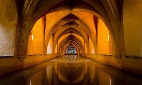 Zdjęcie HISZPANIA / Andaluzja / Sevilla / złoto alkazaru...